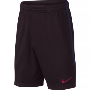 NIKE BARCELONE TRG SHORT JUNIOR MARRON 2019/2020
