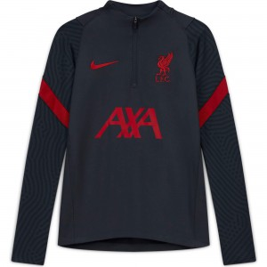 NIKE LIVERPOOL TRG TOP GRIS 2020/2021